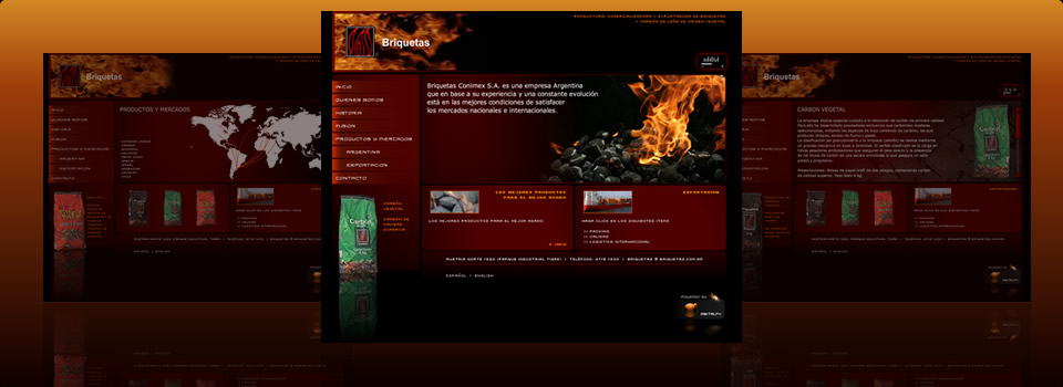 Digital FX - Briquetas - Desarrollo Web - Flash